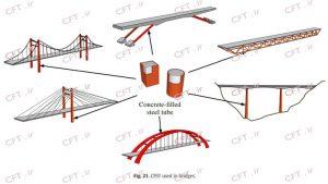 اعضا با مقطع فولادی پرشده با بتن (CFT) در انواع گوناگونی از پلها مانند پلهای معمولی، معلق، کابلی، خرپایی و غیره استفاده شده است. این اعضا میتوانند در نقش پایهها، برجها، قوسها و عرشه پلها مورد استفاده قرار گیرند.